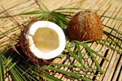 coconut-1501334_1920