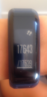 GarminActivityTracker_Steps
