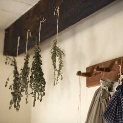 herbs-801819_1280