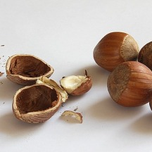 nuts-74362_640