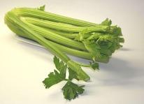 celery-74333_640