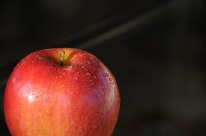 apple-871316_1920