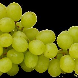 grapes-2673039_960_720