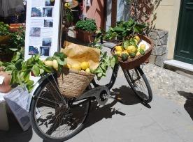 bike-656403_1920
