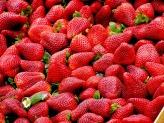 strawberries-99551_1920 (1)