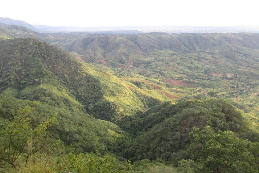 Blick auf Felder von Livingstonia