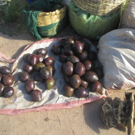 Avocados auf Chitimba-Markt