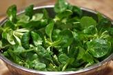 salad-3946919_960_720