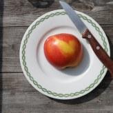 apple-1276796__340