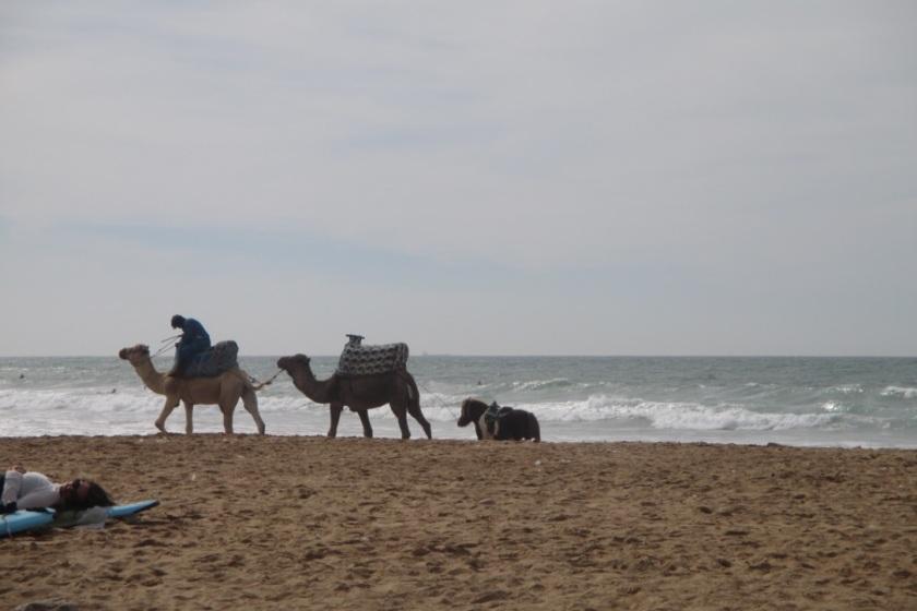 Strandleben_Marokko