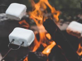 marshmallow-2481460_1920