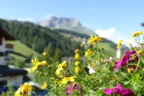 Hotel Gotthard - mOsiunterwegs